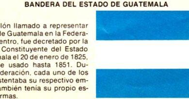¿Quién creó la bandera de Guatemala?